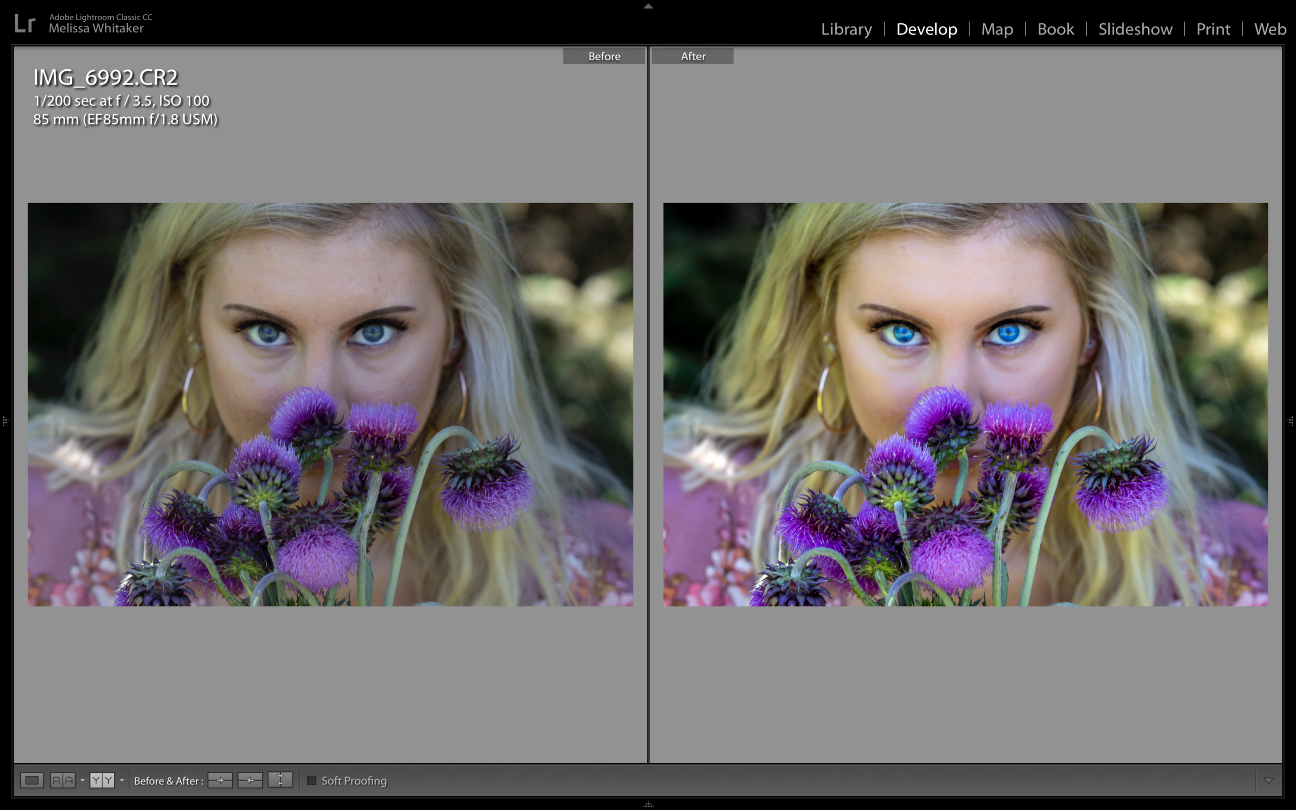 """Screenshot of """"Bravery"""" Before and After Lightroom/Photoshop processing"""
